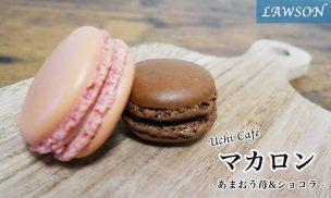 マカロン(あまおう苺&ショコラ)
